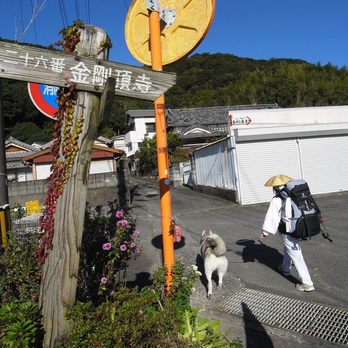 Memory of the second pilgrimage with husky HANA_c0049299_1017588.jpg