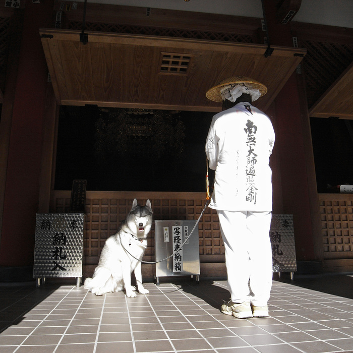 Memory of the second pilgrimage with husky HANA_c0049299_10214657.jpg