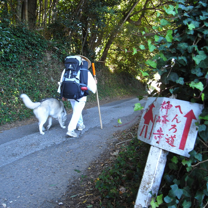 Memory of the second pilgrimage with husky HANA_c0049299_102515.jpg