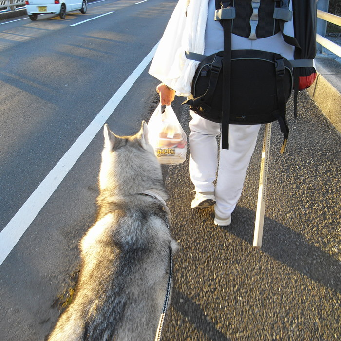 Memory of the second pilgrimage with husky HANA_c0049299_10452445.jpg