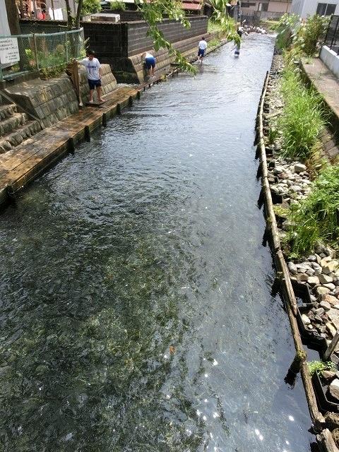 今年も盛大に開催「第27回 田宿川たらい流し川祭り」_f0141310_705670.jpg