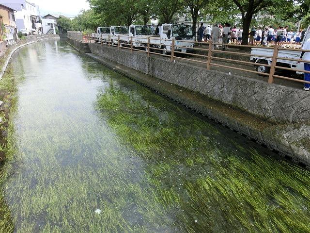今年も盛大に開催「第27回 田宿川たらい流し川祭り」_f0141310_73492.jpg