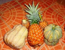 収穫!_a0043520_2283332.jpg