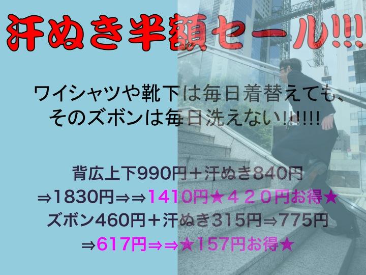 今週のお花とセール情報_a0200423_1640275.jpg