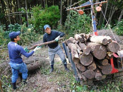 わが家のきのこ狩り!おうちで原木しいたけ栽培 その2_a0254656_16565734.jpg