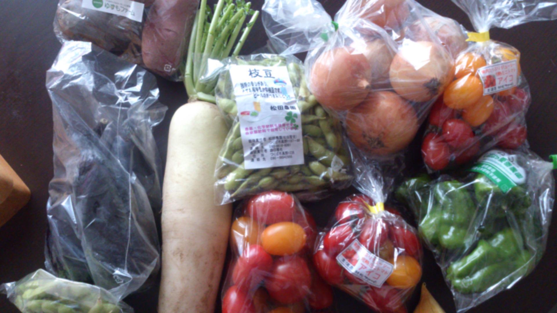 たっぷり野菜_a0147759_201425.jpg