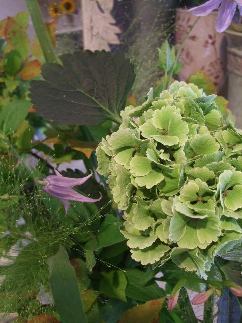 オークリーフ(秋色紫陽花を入れたアレンジメント)_f0049672_1754146.jpg