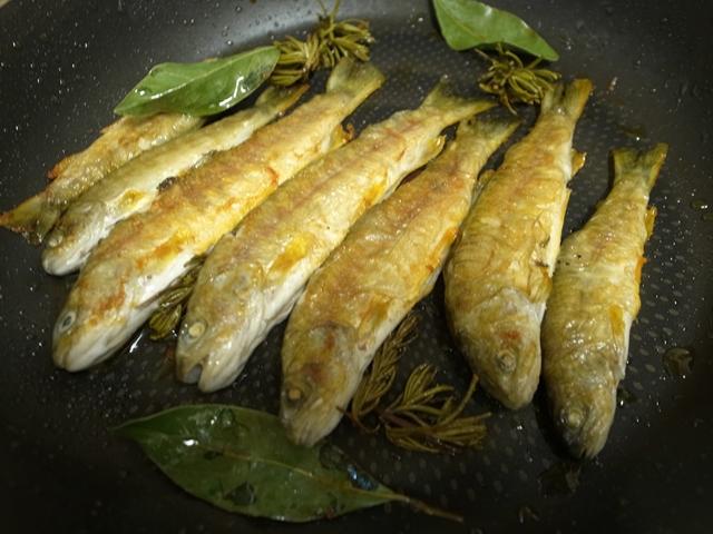 パンと岩魚とネコ日和_e0271890_1632717.jpg