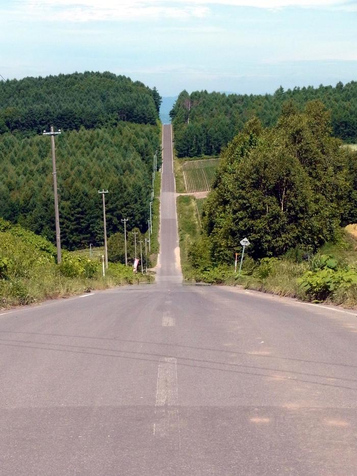 北海道、就実の丘へ_d0116009_1174314.jpg