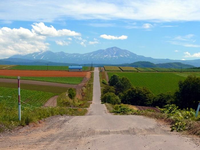 北海道、就実の丘へ_d0116009_122363.jpg