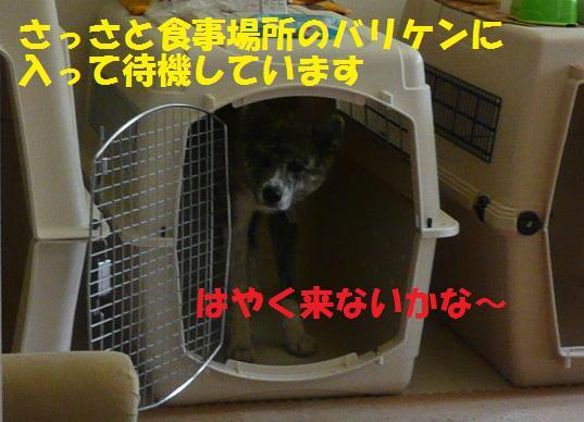 f0121712_15184655.jpg