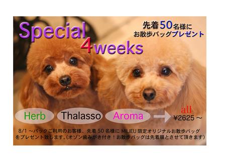 ☆☆☆8月スペシャルキャンペーン☆☆☆_d0060413_230252.jpg