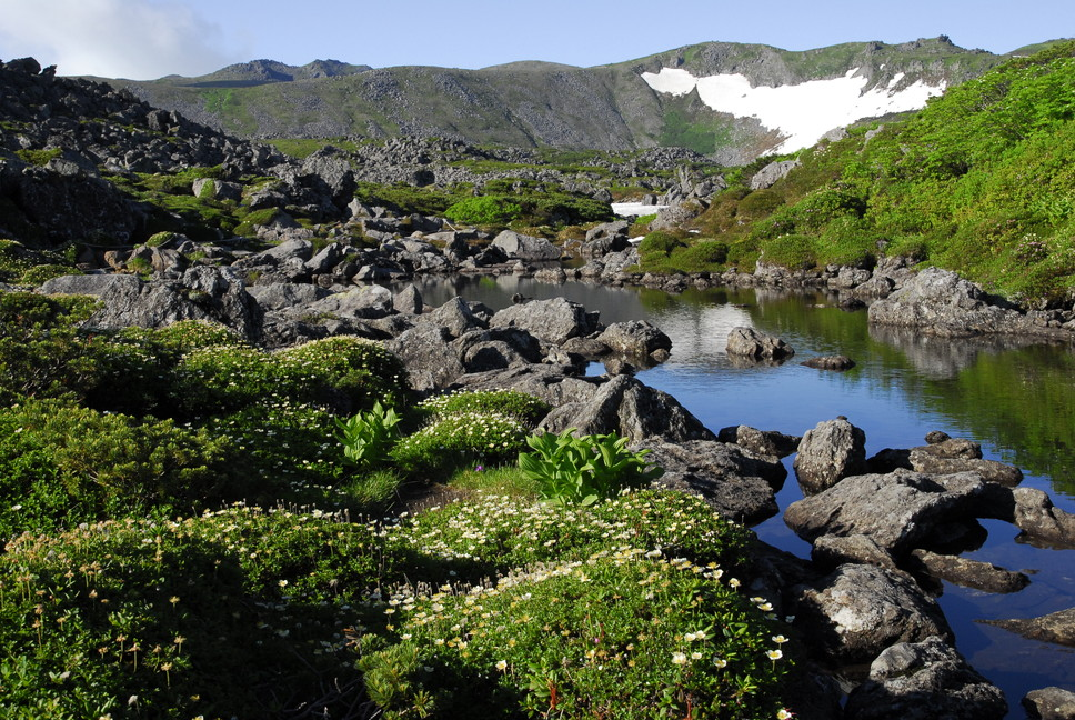 2013年7月 July 2013 大雪トムラウシ山系縦走 Trekking in Taisetsu (Tomurausi) Mountains_c0219616_1524966.jpg