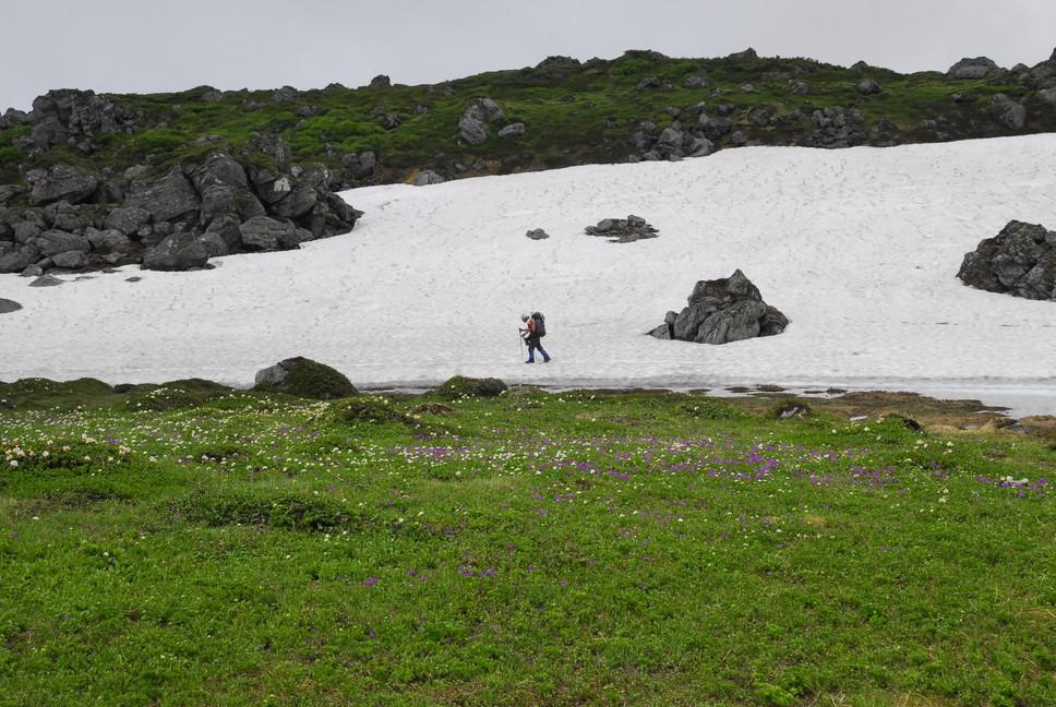 2013年7月 July 2013 大雪トムラウシ山系縦走 Trekking in Taisetsu (Tomurausi) Mountains_c0219616_1556653.jpg