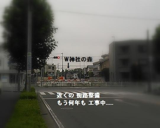 b0226221_21403554.jpg