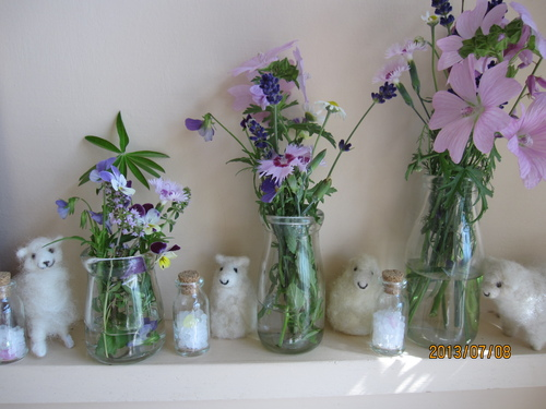 夏のお花たち_f0231042_22502782.jpg