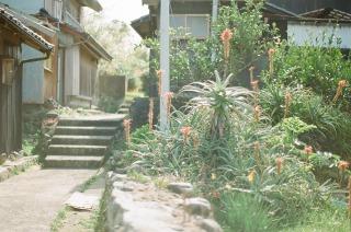 出羽島の風景vol.1_b0178548_1458527.jpg