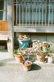 出羽島の風景vol.1_b0178548_1525078.jpg