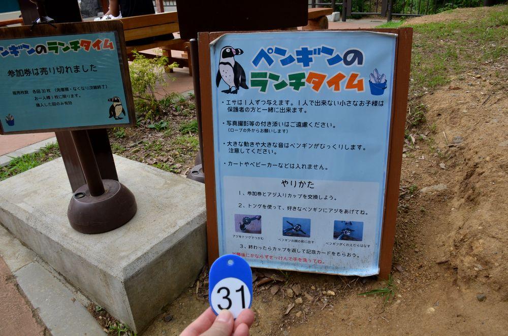ペンギンのランチタイムとペンペン_b0024758_2391125.jpg