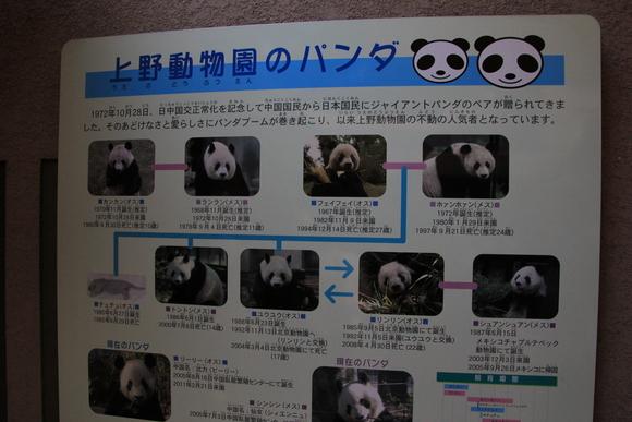 上野動物園!!_d0202264_618191.jpg