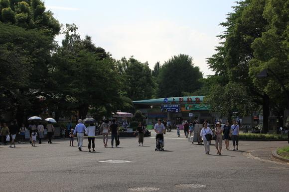 上野動物園!!_d0202264_6225953.jpg
