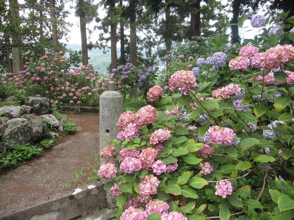 富士川町妙法寺へバスハイク_e0191174_1625141.jpg