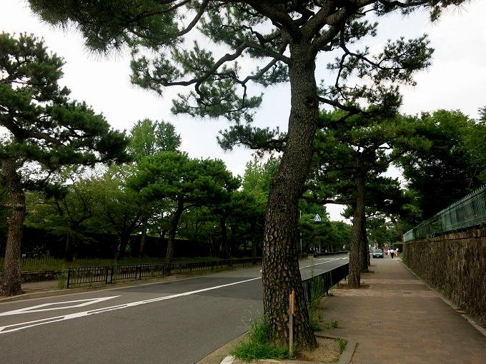 京都へ1_a0258686_6405433.jpg
