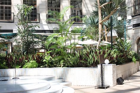 水戸プラザホテルの中国料理「四川飯店」に行って来ました♪_a0154192_14213662.jpg