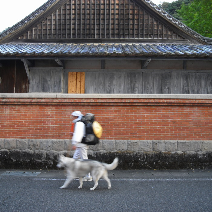 Memory of the second pilgrimage with husky HANA_c0049299_7212159.jpg