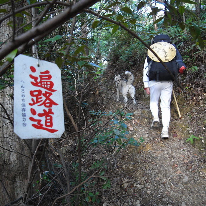 Memory of the second pilgrimage with husky HANA_c0049299_7241659.jpg