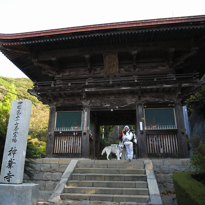 Memory of the second pilgrimage with husky HANA_c0049299_7252767.jpg