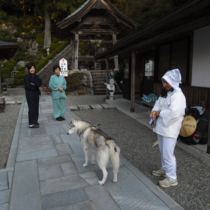 Memory of the second pilgrimage with husky HANA_c0049299_7261938.jpg