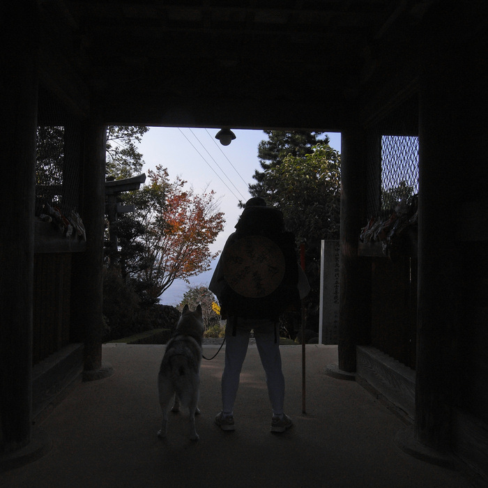 Memory of the second pilgrimage with husky HANA_c0049299_7295563.jpg
