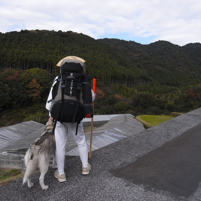Memory of the second pilgrimage with husky HANA_c0049299_7305547.jpg