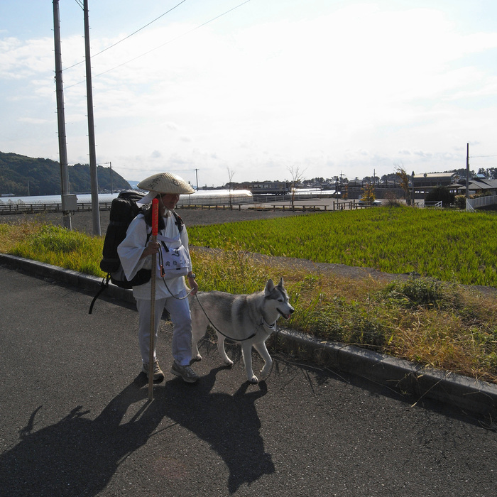 Memory of the second pilgrimage with husky HANA_c0049299_7312159.jpg