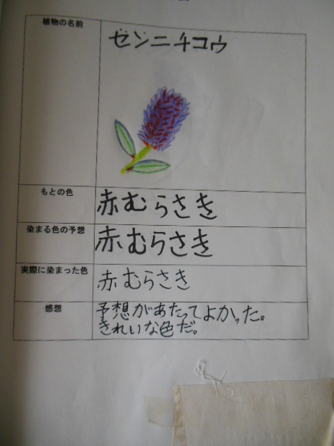 f0208812_1235940.jpg