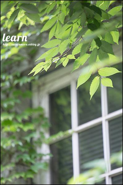 学ぶこと_f0100215_23375517.jpg