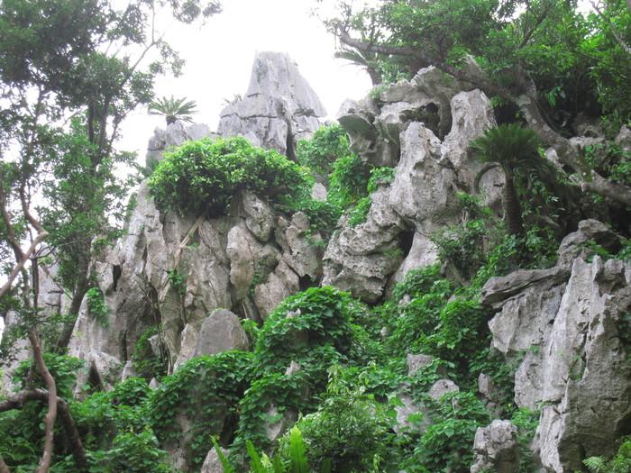 大石林山01_e0155231_23461281.jpg