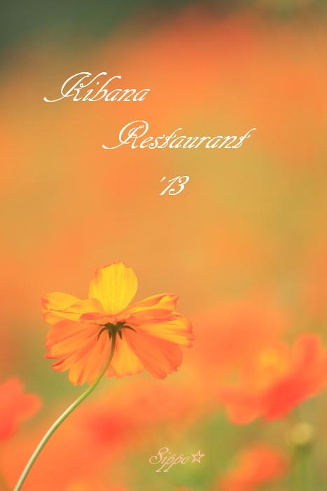 """■■ Restaurant  \""""kibana\""""   2013  Open ■■_c0195662_2315027.jpg"""