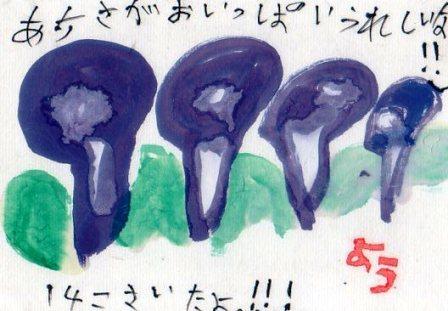孫からの絵手紙_a0220570_22564184.jpg