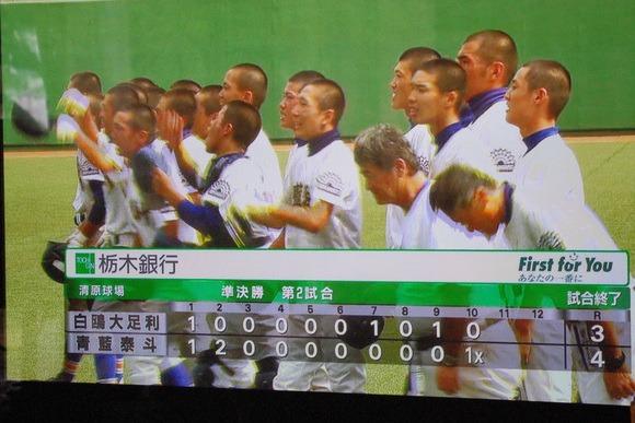 ((φ(-ω-)ちくちく① 高校野球観戦_b0187479_16351084.jpg