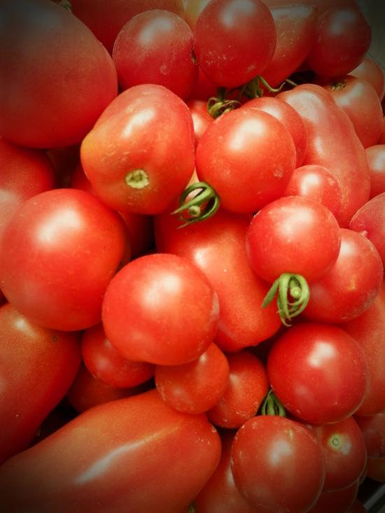 濃厚「有機トマトソース」作り。_a0125419_19452088.jpg