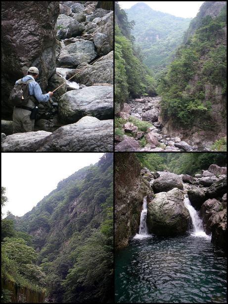 どこか釣りになる川は・・・・・_f0053342_10513382.jpg