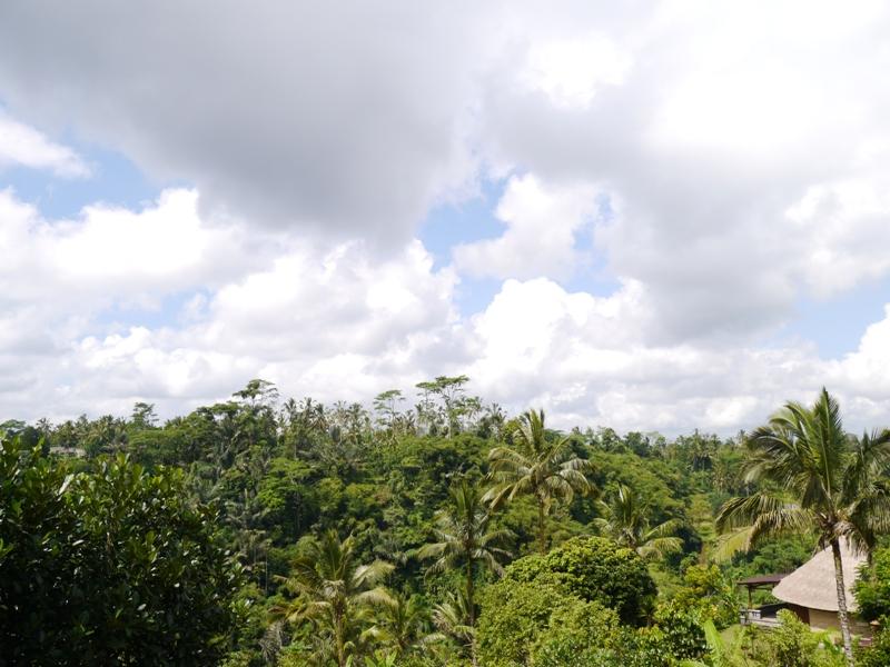 バリ島へ行く。② ~バグースジャティというホテル~_f0232060_013622.jpg