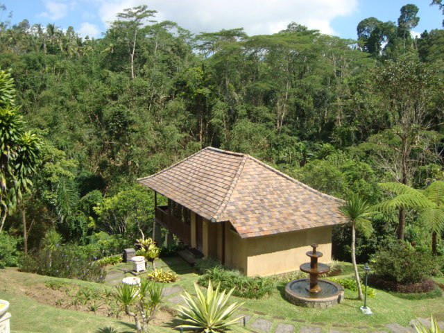 バリ島へ行く。② ~バグースジャティというホテル~_f0232060_1245513.jpg