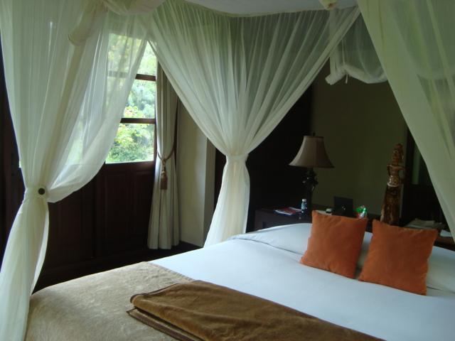 バリ島へ行く。② ~バグースジャティというホテル~_f0232060_1334628.jpg