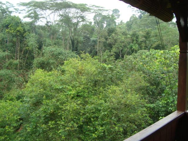 バリ島へ行く。② ~バグースジャティというホテル~_f0232060_1393837.jpg