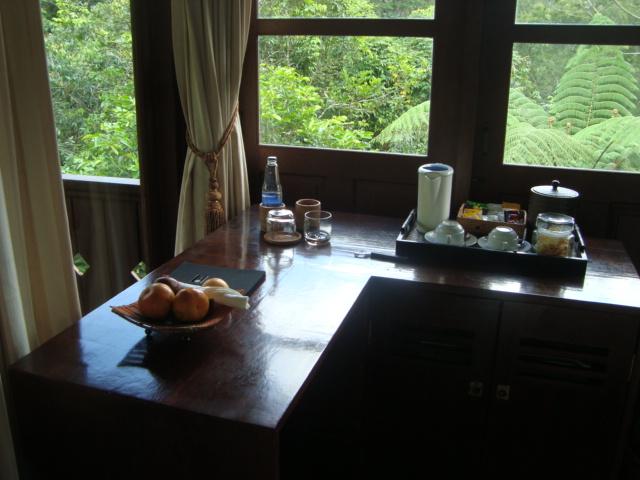 バリ島へ行く。② ~バグースジャティというホテル~_f0232060_1413164.jpg