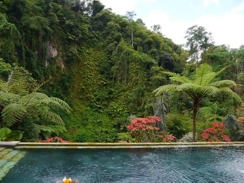 バリ島へ行く。③ ~ベホマを浴びる毎日~_f0232060_14422968.jpg