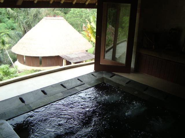 バリ島へ行く。④ ~ヨガと瞑想と私~_f0232060_15545454.jpg